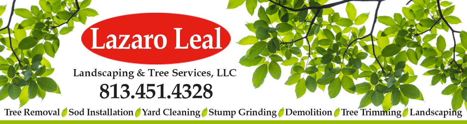 Lazaro Leal Landscaping and Tree Service LLC
